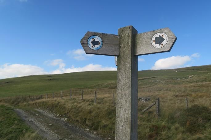 Tegid Way signpost
